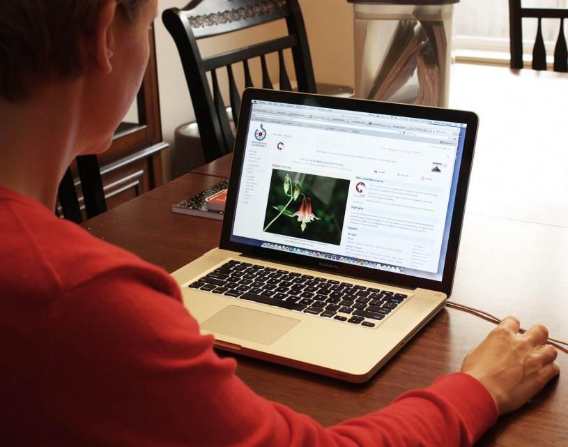 ¿Vas a usar la banca por internet para un préstamo?